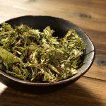 hojas de stevia como medio de lucha contra sobrepeso