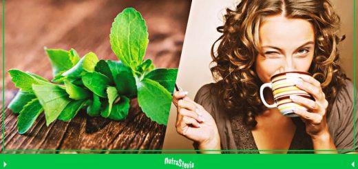 la stevia aporta eficazmente a la salud de forma natural