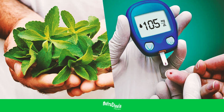 Stevia edulcorante natural contra la diabetes nutrablog - Alimentos contra diabetes ...