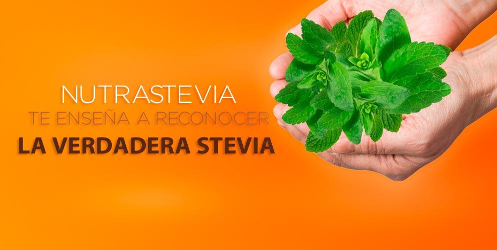 ¡Que no nos engañen! NutraStevia te enseña a reconocer la verdadera Stevia