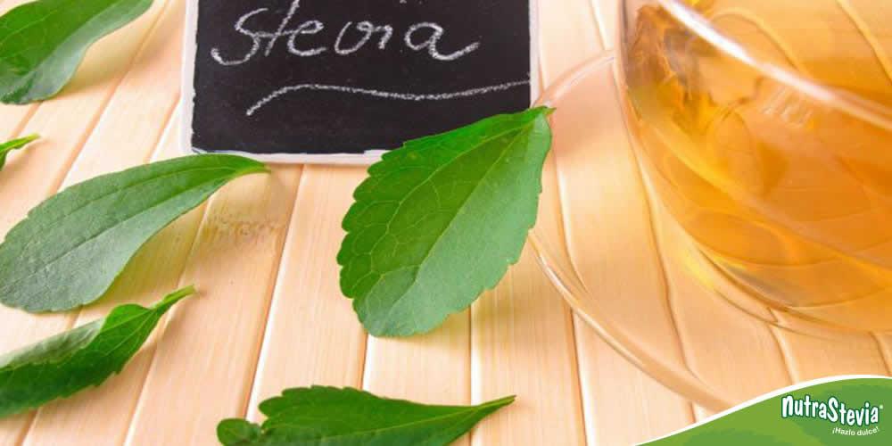 Conoce las propiedades medicinales del té de stevia