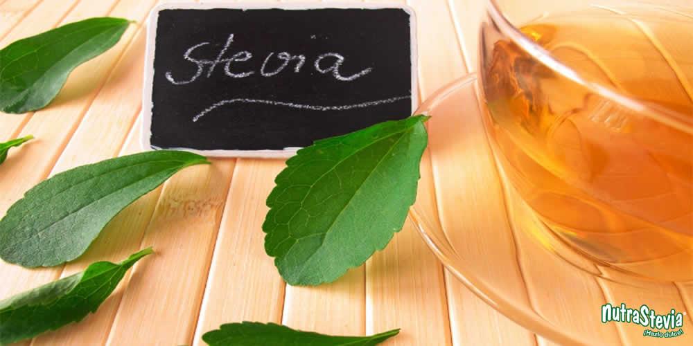 Infusión de stevia: Todas sus propiedades