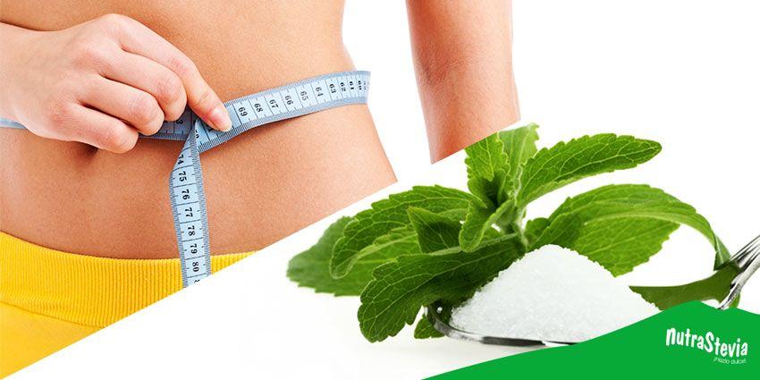 uso del esteviosido para la perdida de peso