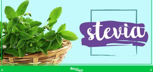 stevia el endulzante de origen natural