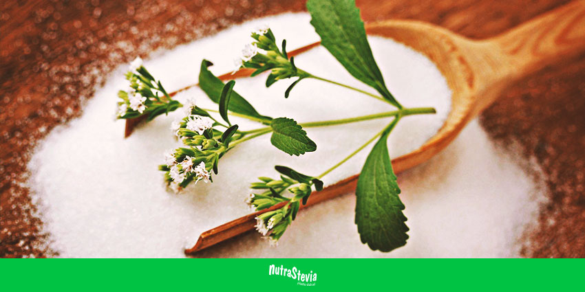 Stevia: un sustituto de azúcar totalmente natural que es ideal para diabéticos